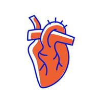 Heart DNA